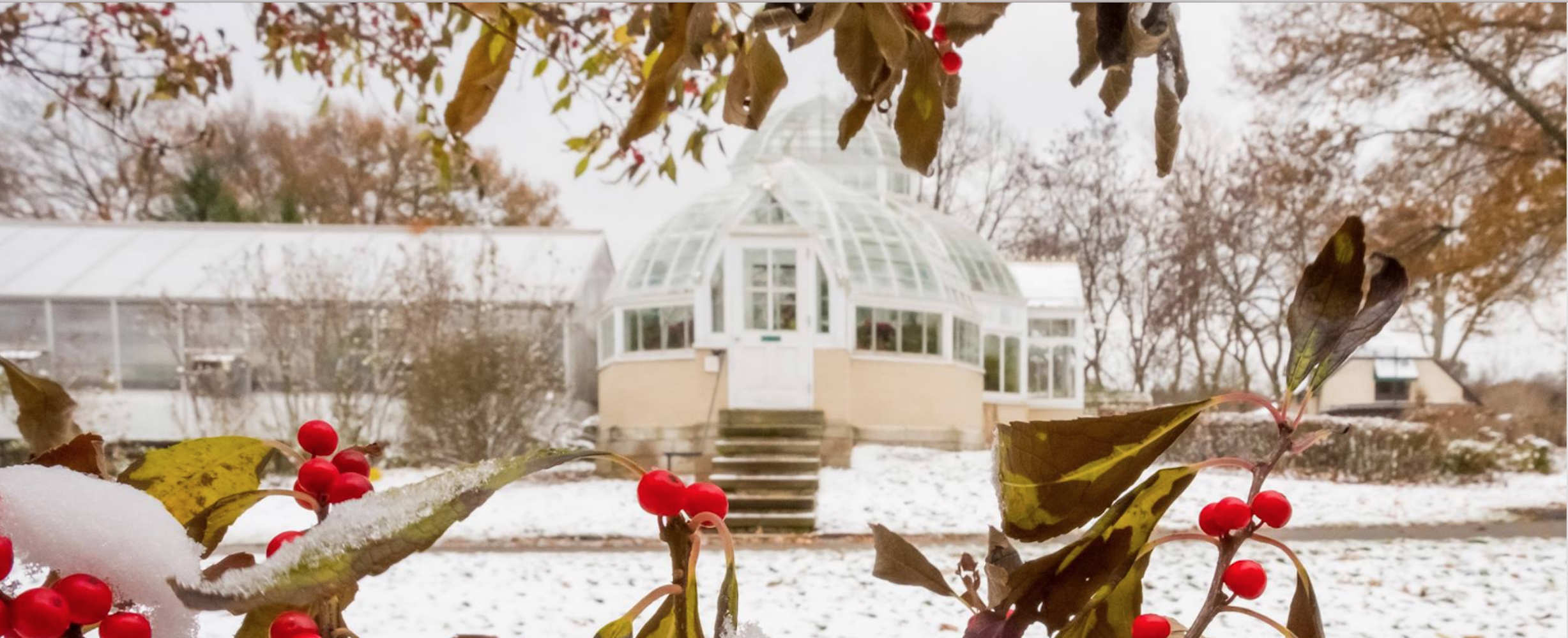 Frick greenhouse in winter